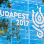 17. FINA World Championships, Budapest 2017 – arculat